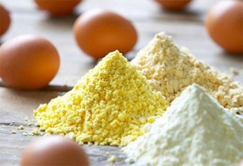 Best Protein Powder For Women 11