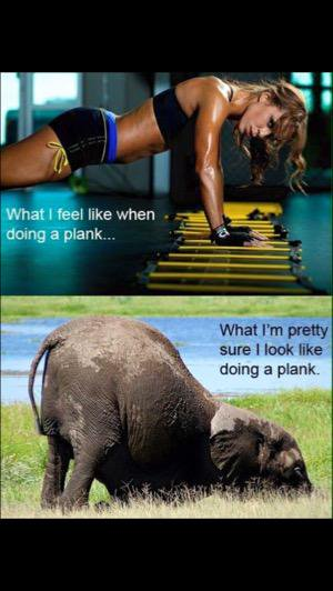 Funny how I look planking meme
