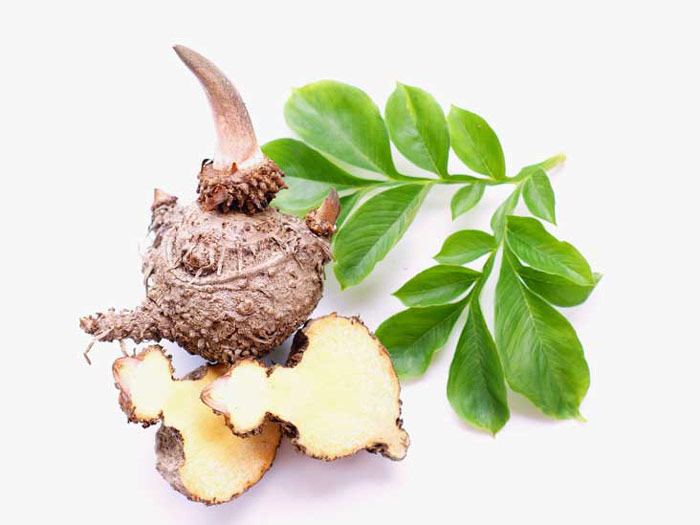 glucomannan a natural fiber for weightloss