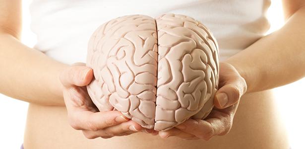 DMAE Brain health