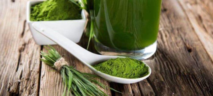 green tea powder on a spoon